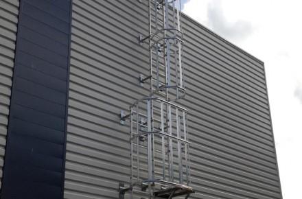 Ladder crinoline